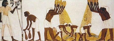 egipcio-produccion-pan